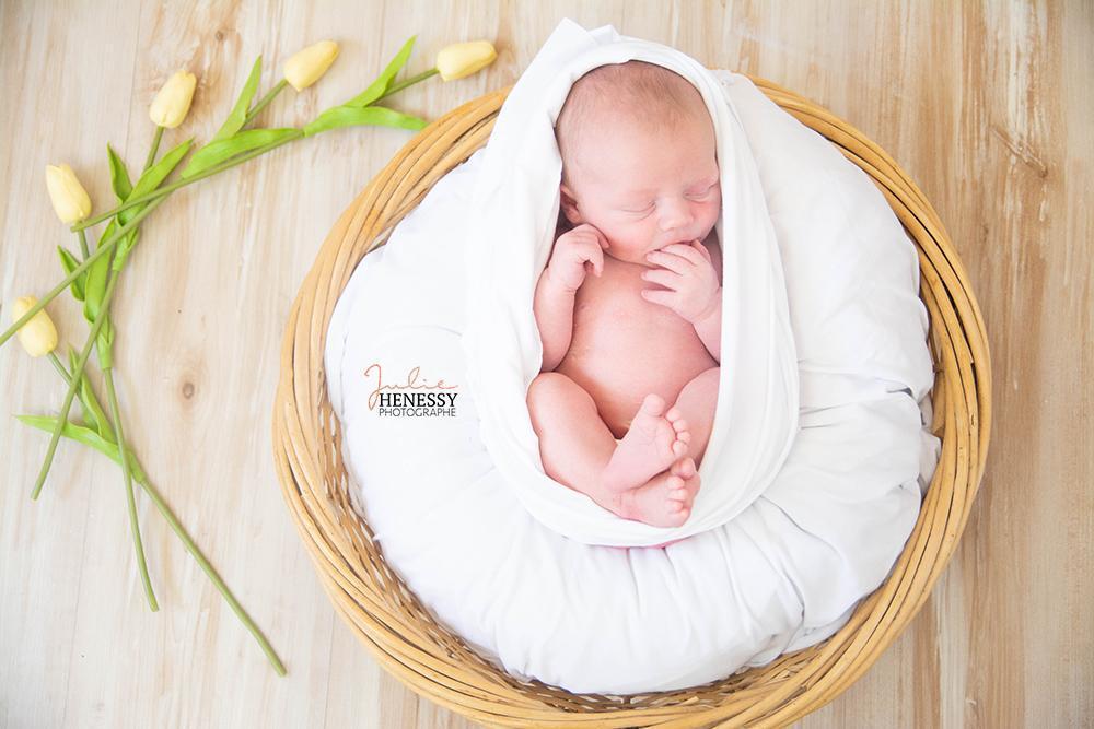 photographe, grossesse, famille, nouveau-né, bébé, maternité, couple, reportage, la roquebrussanne, toulon, paca, provence, 83,